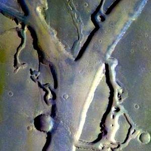 Granicus Valles false color (THEMIS_IOTD_20150112)