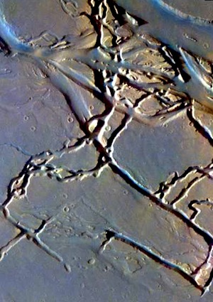 Channels in Granicus Valles false color (THEMIS_IOTD_20150318)