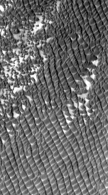 Dunes of Hyperboreae Undae (THEMIS_IOTD_20160517)