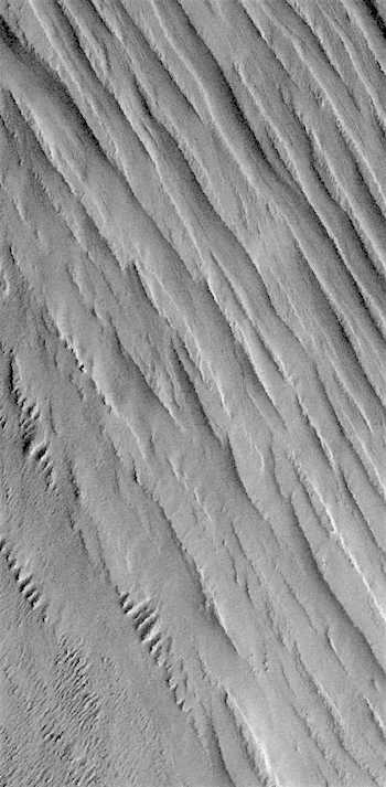 Yardangs in Memnonia Sulci (THEMIS_IOTD_20170109)