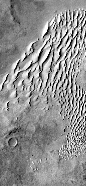 Warm dunes in Kaiser Crater (THEMIS_IOTD_20170309)