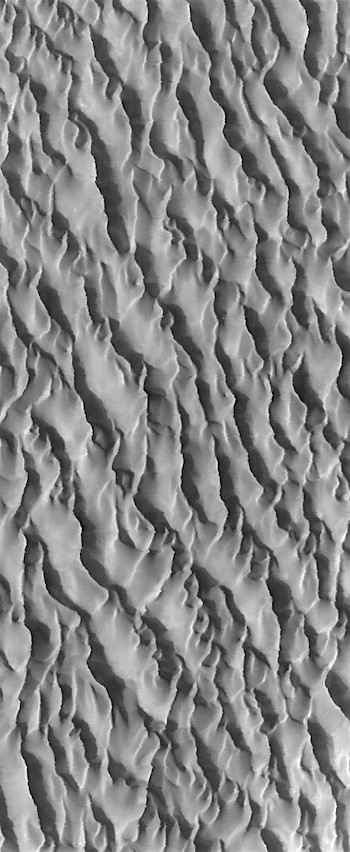 Waves of sand in Proctor Crater (THEMIS_IOTD_20170308)