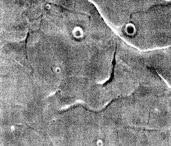 Utopia Planitia THEMIS Art #138 (THEMIS_IOTD_20170703)