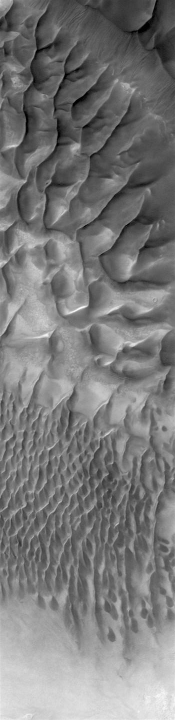Dune ridge in Russell Crater (THEMIS_IOTD_20170809)