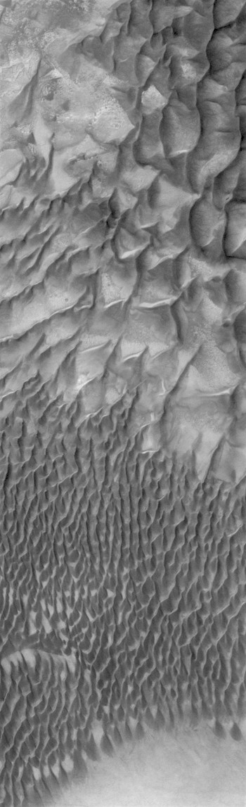 Dunes transition line in Russell Crater (THEMIS_IOTD_20170808)