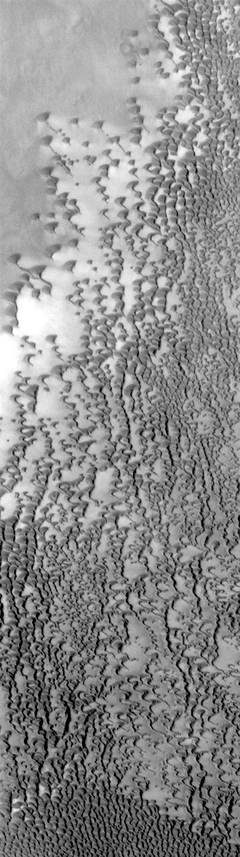 Bare ground, basaltic dunes, and frost (THEMIS_IOTD_20170919)