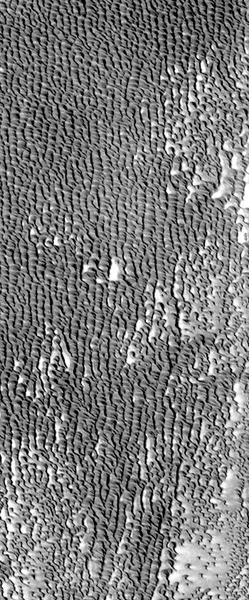 Dunes of Siton Undae (THEMIS_IOTD_20170812)