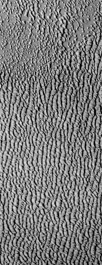 Marching dunes of Siton Undae (THEMIS_IOTD_20170911)
