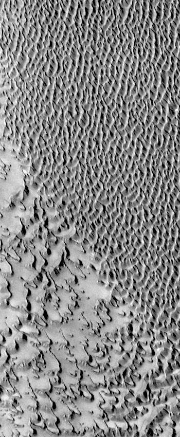 Merging dunes in Siton Undae (THEMIS_IOTD_20170914)