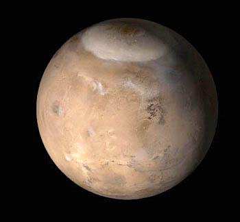 Mars-Crop