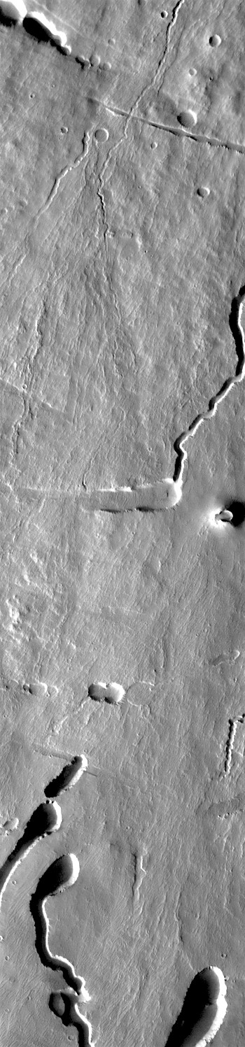 Lava tubes and flows on Pavonis Mons (THEMIS_IOTD_20171101)