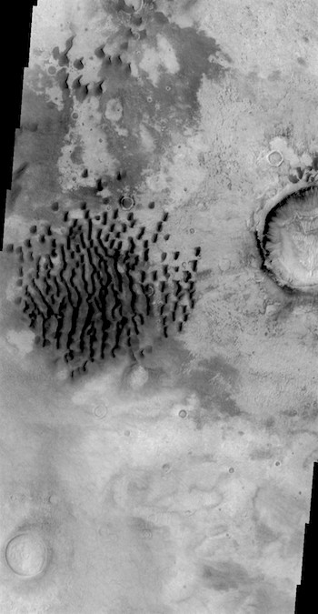 Dunes like worms in Kaiser Crater (THEMIS_IOTD_20180124)