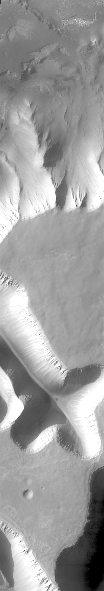 Sapping gullies in Louros Valles (THEMIS_IOTD_20180301)