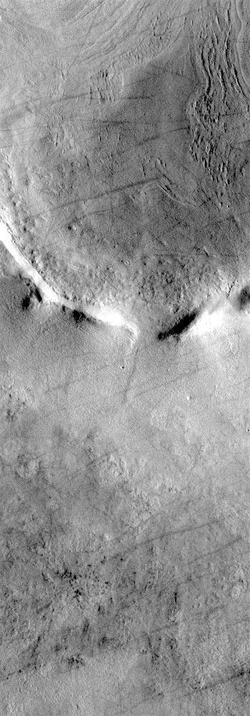 Utopian dust devil tracks (THEMIS_IOTD_20180702)