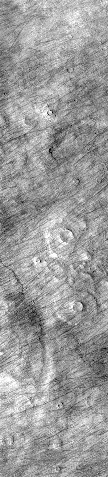 Dust devil tracks in Promethei Terra (THEMIS_IOTD_20190102)