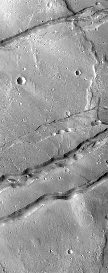 Graben in Sirenum Fossae (THEMIS_IOTD_20190114)