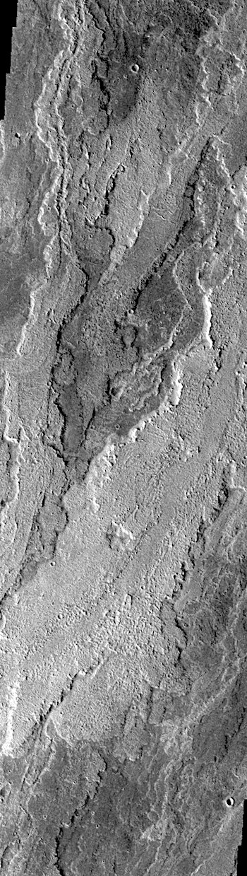 Floods of lava across Daedalia Planum (THEMIS_IOTD_20190211)