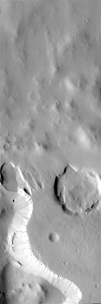 Gullies in craters (THEMIS_IOTD_20190212)