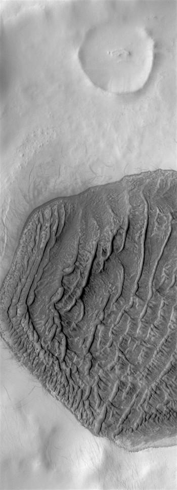High-latitude dune field (THEMIS_IOTD_20190214)