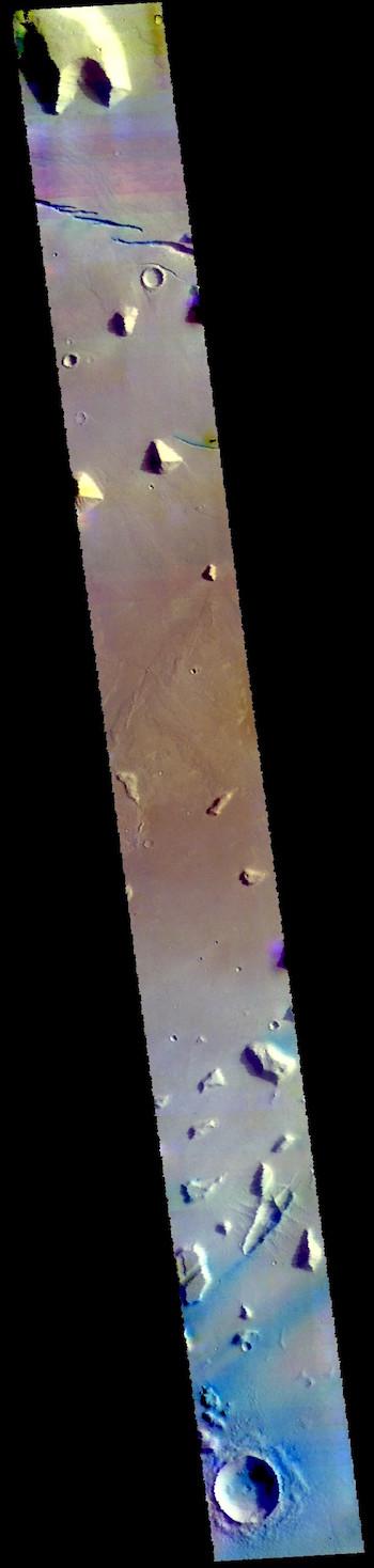 Elysium Planitia in false color (THEMIS_IOTD_20190326)