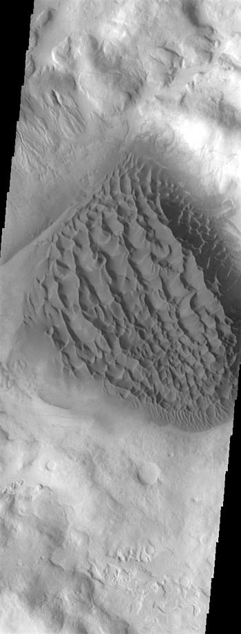 Dunes in Matara Crater (THEMIS_IOTD_20190422)