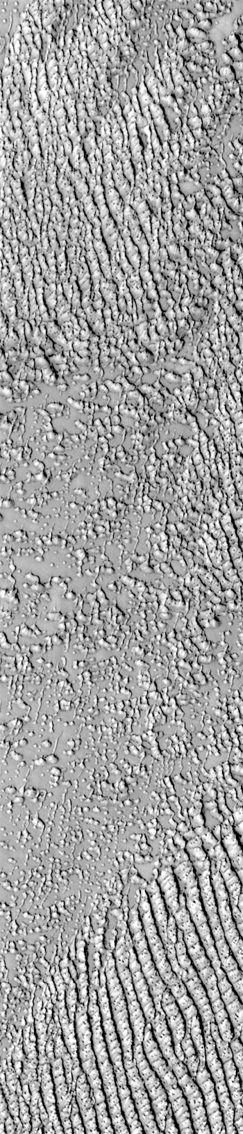Dunes in Hyperboreae Undae (THEMIS_IOTD_20190805)